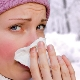 Health News - Natural Anti-Virals for Fighting the Flu