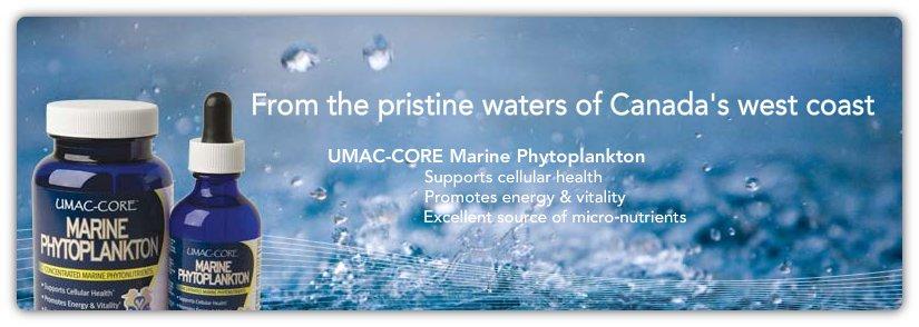 Umac-Core Phytoplankton